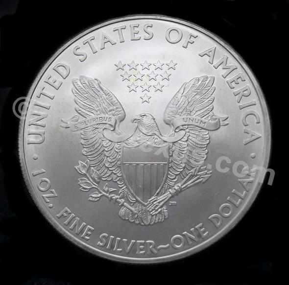 US Silver Eagle Fine Silver 1 Oz