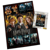 Harry Potter Movie Poster Puzzle