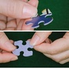 Sample White Mountain puzzle pieces