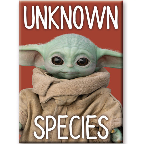 Mandalorian The Child Unknown Species Flat Magnet