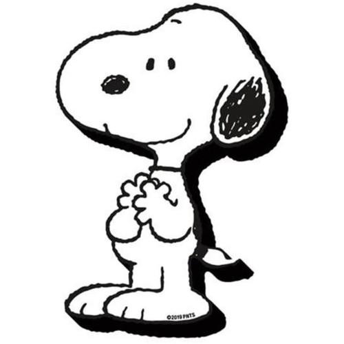 Peanuts Snoopy Chunky Fridge Magnet