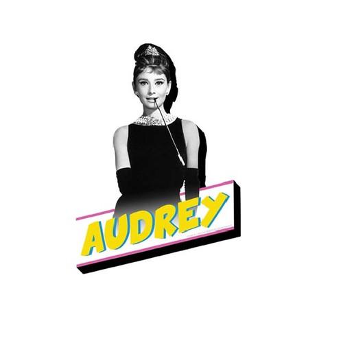 Audrey Hepburn Chunky Magnet