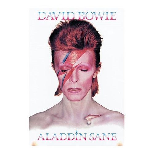 Davie Bowie Aladdin Sane Tin Sign