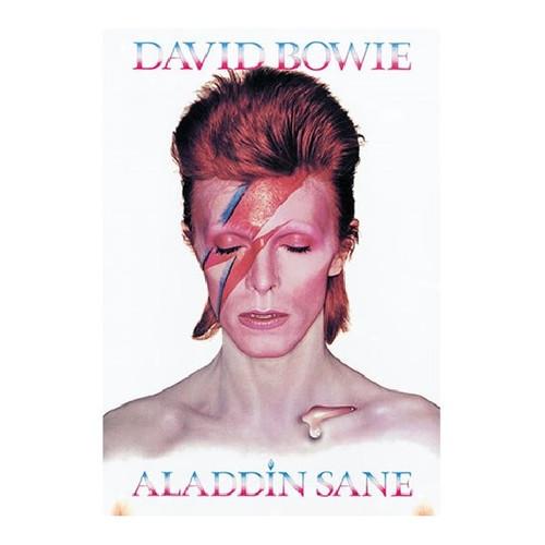 Davie Bowie Aladdin Sane Tin Sign