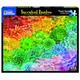Succulent Rainbow (1569pz) - 1000 Piece Jigsaw Puzzle
