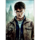 Harry Potter Close-Up Photo Flat Magnet