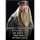 Harry Potter Dumbledore Those Without Love Flat Magnet