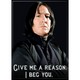 Harry Potter Snape I Beg You Flat Magnet