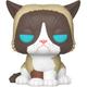 Grumpy Cat Pop Figure