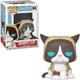 Grumpy Cat Pop Funko