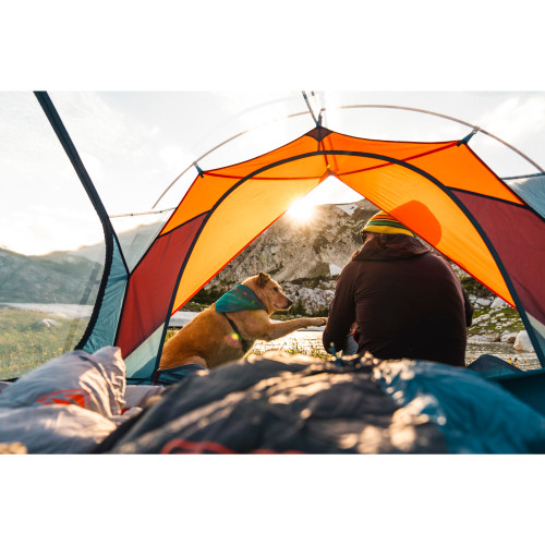 Woman and dog sitting in Kelty tent, watching the sunrise