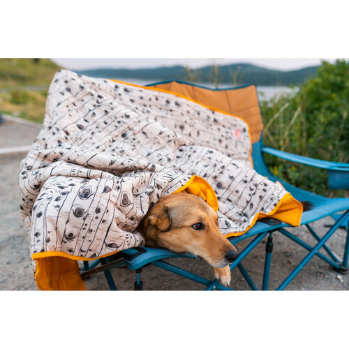 Dog covered by Kelty Bestie Blanket