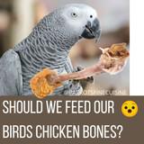 Should we feed our birds chicken bones?