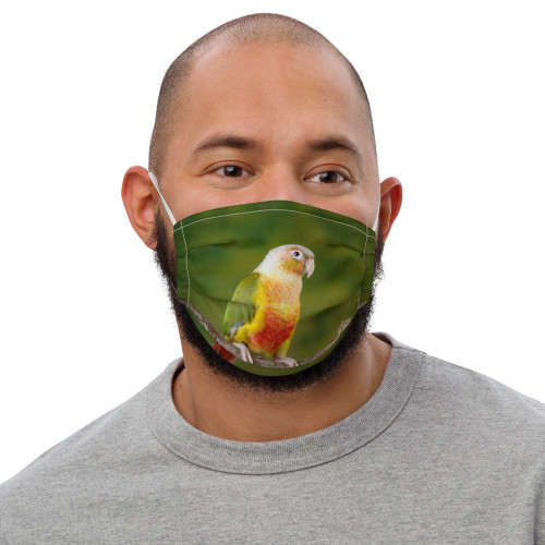Conure - Green Face Mask