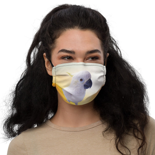 Polly Face Mask