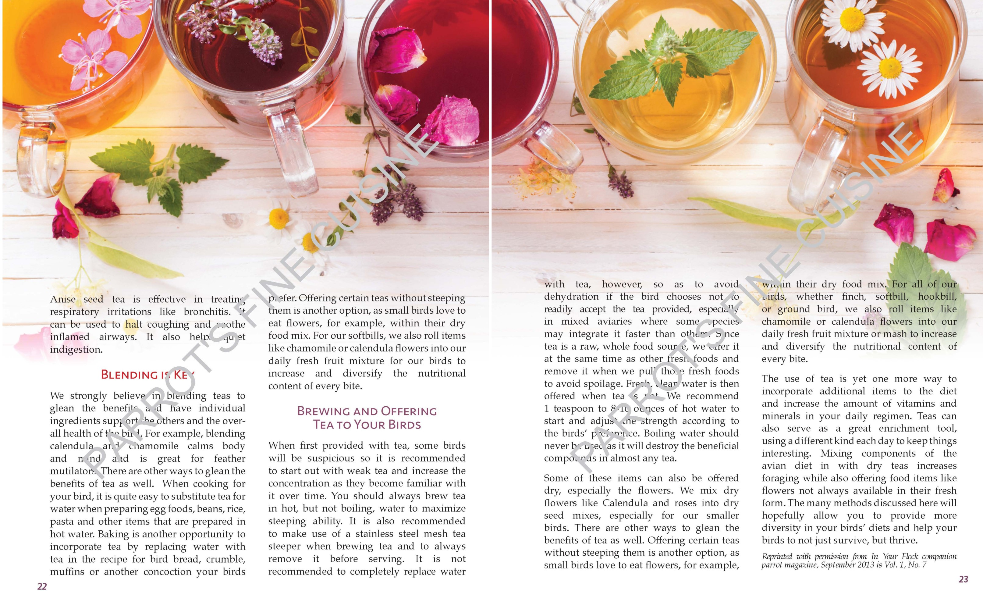 The Use of Tea in Avian Husbandry