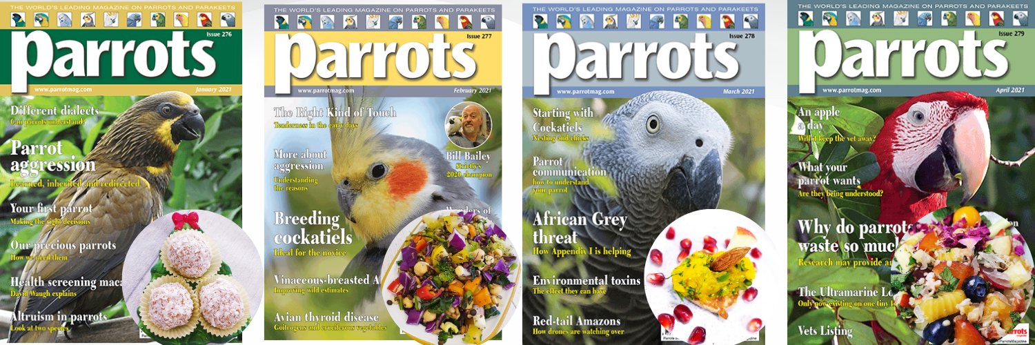 publications-in-parrot-magazine.png