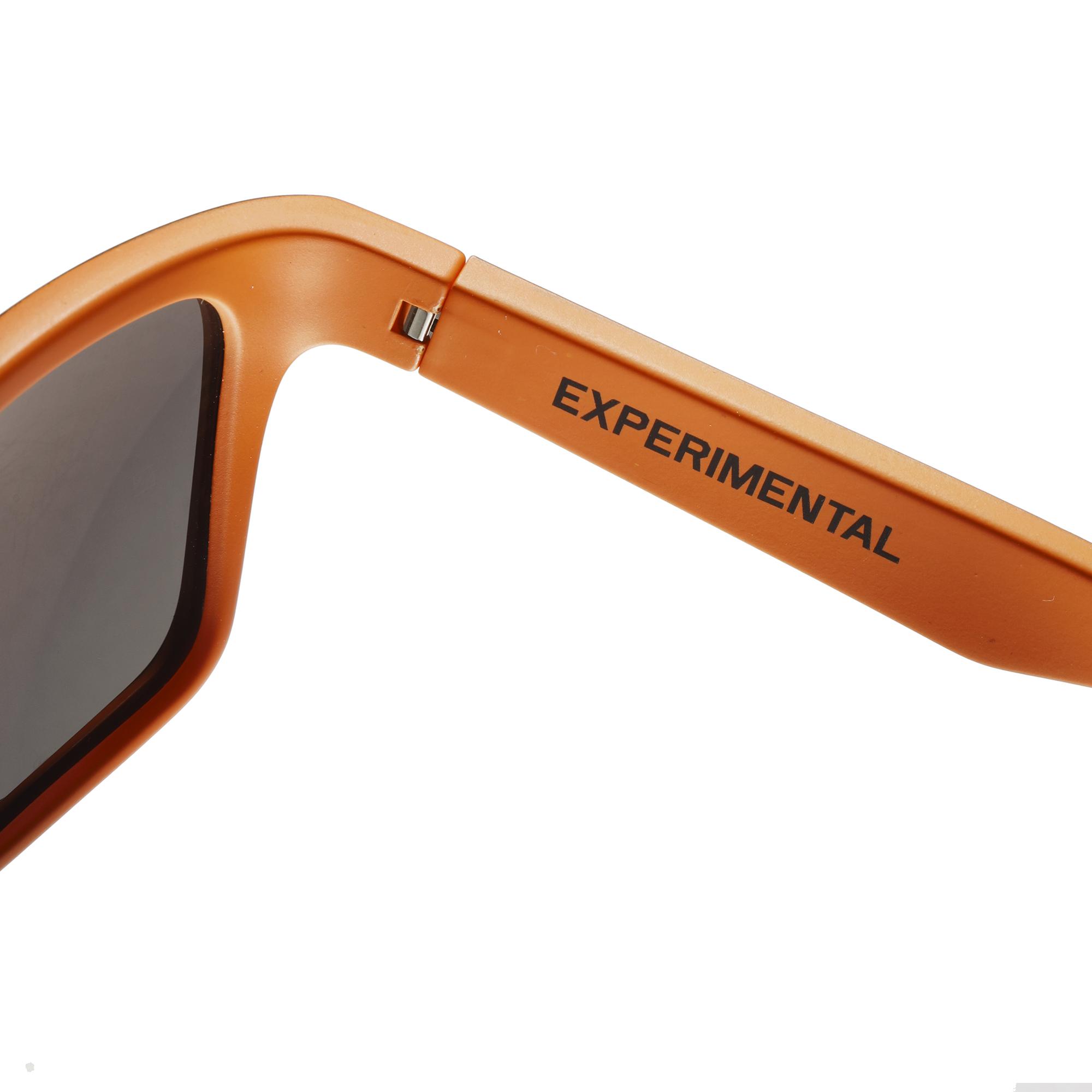 Experimental Edition Evolution FLT Sunglasses - Close Up Arm Inside