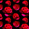 True Rose - Floral Fabric By The Yard