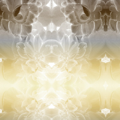 Spectral - Abstract Floral Fabric Design
