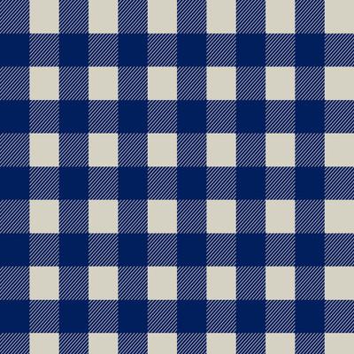 Blocks - Plaid Fabric By The Yard