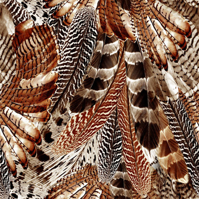 Feathers - Animal Print Fabric By The Yard