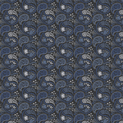 Matisse Paisley Fabric Design (Blue and Gray colorway)