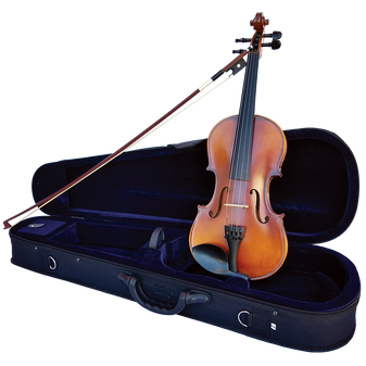 Vivo Encore 1/2 Student Violin Outfit with Professional setup