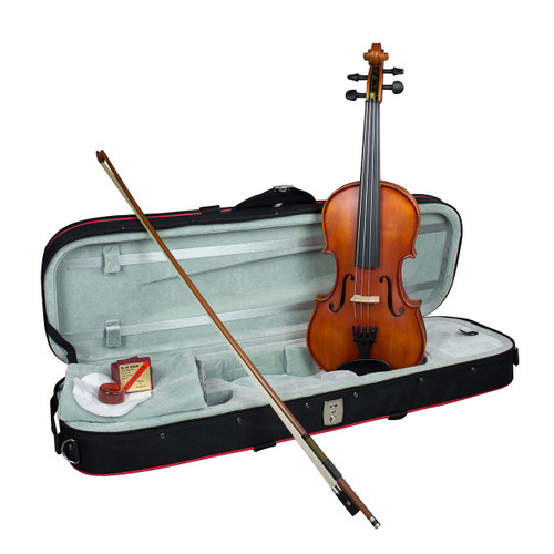 Hidersine 4/4 Violin Vivente all Solid Student Outfit with professional Setup.