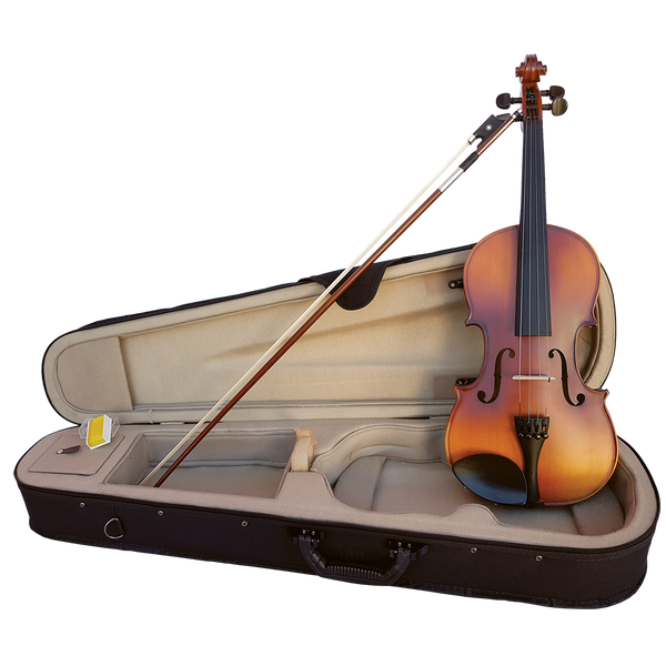 SZ Sarasate all Solid Student Violin with Professional Set-up, Hard case bow and rosin