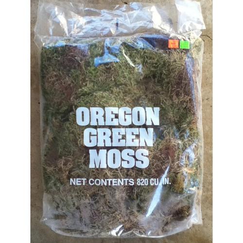 Oregon Sphagnum Moss