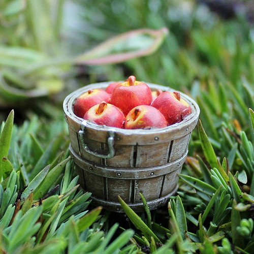 Fairy Garden - Bushel of Apples