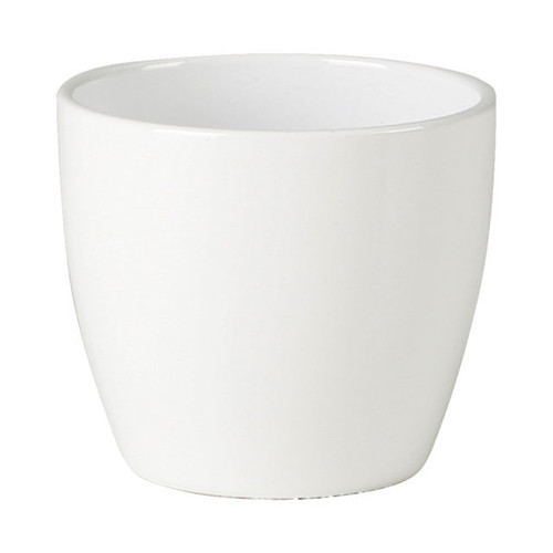"Indoor Alaska White Mini Pot 2.75"""