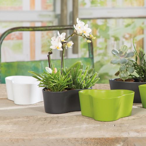 """Indoor Mini Trilogy Ceramic Pot 5"""""""