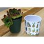Indoor Garden Cactus Mini Pot 870-07