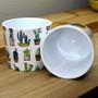 Indoor Garden Cactus Mini Pot 870-09