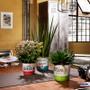 Indoor Garden Retro Mini Pot 870-07