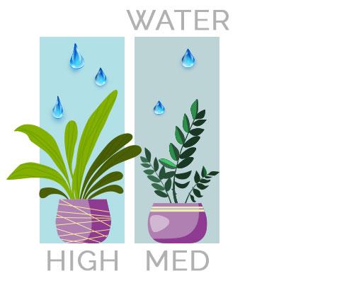 High to Medium Water Needs