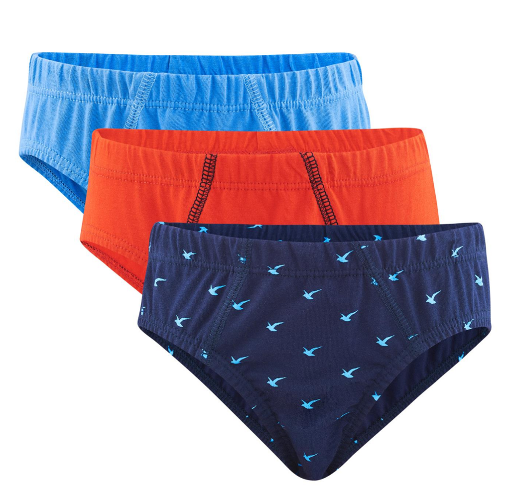 Organic Cotton Boys Underwear 3 pack