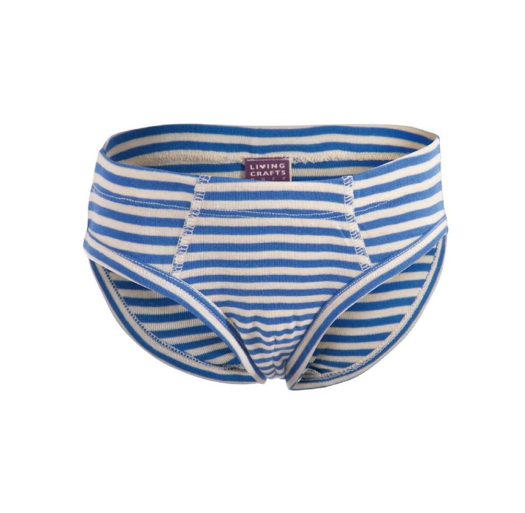 Organic Cotton Boys' Briefs Underwear