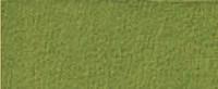 Cosilana Organic Wool Terry Footed Pajamas Color: Green