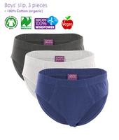 Organic Cotton Underwear| Living Crafts | Boy's 3 pack