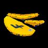 F-One Swing Wing