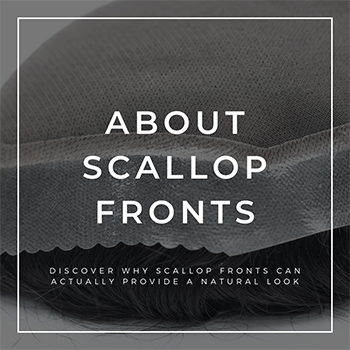 About Scallop Fronts