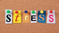 Eat to beat stress