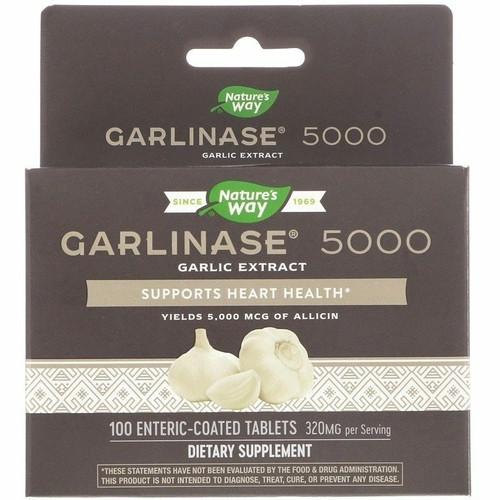 Enzymatic Therapy Garlinase