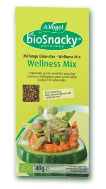 AVogel BioSnacky Wellness Mix Seeds
