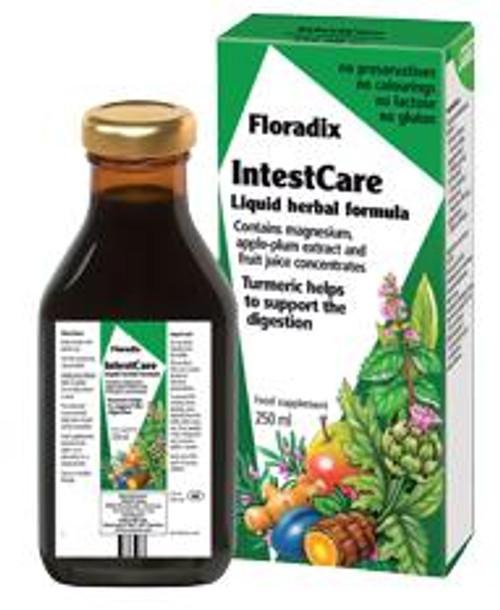 Floradix IntestCare