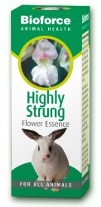 AVogel Animal Highly Strung Essence