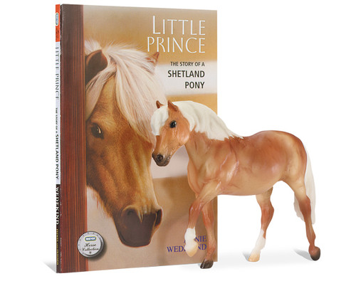 Little Prince Book and Model Set